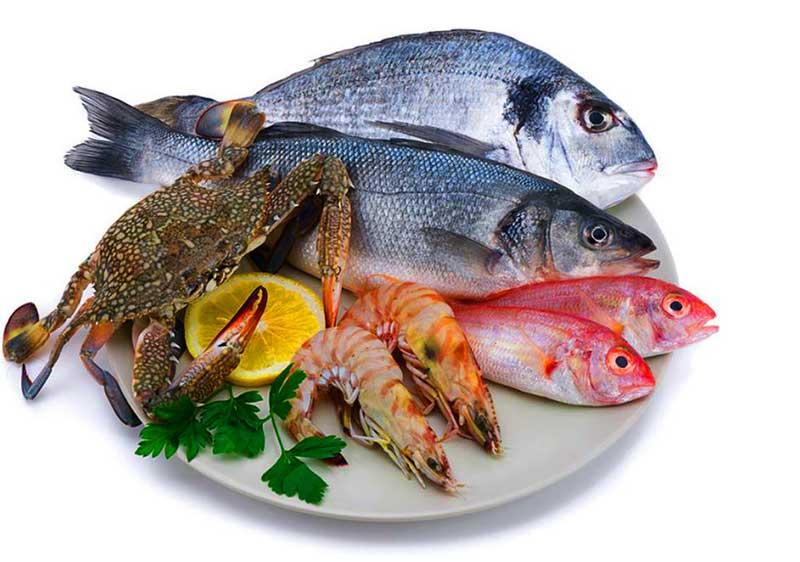 pnf lk – Sri Lankan Seafood Exporters & Seafood Suppliers